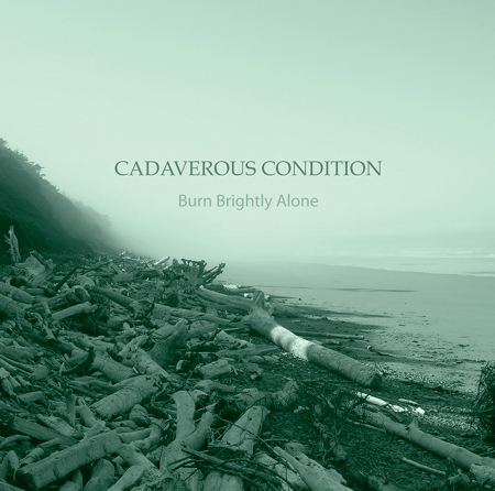 Cover of Cadaverous Condition album
