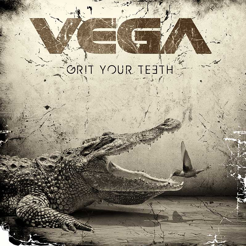 Photo of Vega album cover