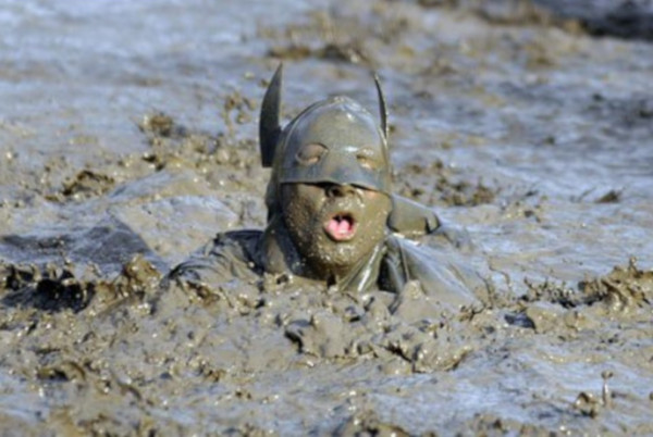 Download 2019 was a mudbath