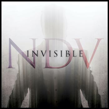 Album cover of Invisible by Nick D'Virgilio