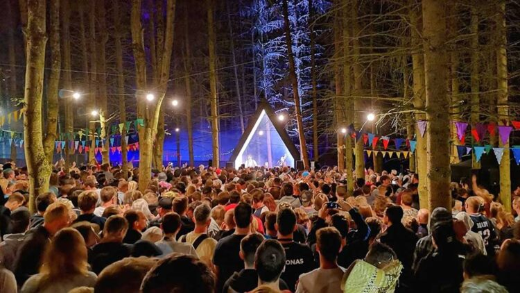 2000trees festival photo