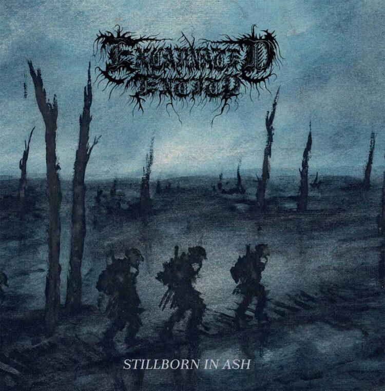 Excarnated Entity - Stillborn in Ash album cover