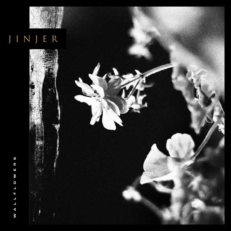 Cover of Wallflowers from Jinjer